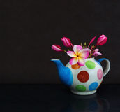 美好的花羽毛或赤素馨花在茶壶在深黑色 免版税库存照片