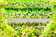 美好的花背景婚礼场面 免版税库存照片