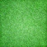 美好的草绿色纹理 免版税图库摄影