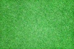 美好的草绿色纹理 库存图片