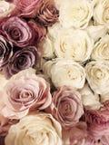 美好的葡萄酒罗斯背景 白色,桃红色,紫色,紫罗兰色,奶油色颜色花束花 花卉典雅式样 免版税库存图片