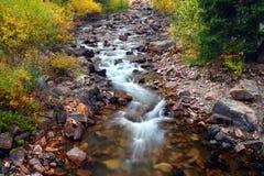 美好的蒙大拿小河场面 免版税库存照片