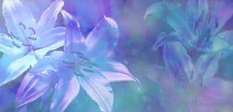 美好的蓝色婚姻的Bokeh Lillies背景 免版税图库摄影
