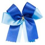 美好的蓝色弓 库存照片