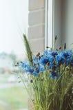 美好的蓝色矢车菊草本束在窗口基石的一个玻璃花瓶开花 夏时概念 静物画,土气 免版税图库摄影