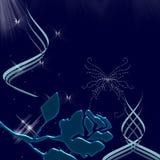 美好的蝴蝶夜间天空闪闪发光 免版税库存图片