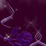 美好的蝴蝶夜间天空闪闪发光 免版税库存照片