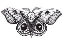 美好的蝴蝶纹身花刺 Antherina suraka 马达加斯加舷窗 Dotwork纹身花刺 传统黑小点样式墨水 免版税库存照片