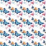 美好的逗人喜爱的老练壮观的美妙的嫩柔和的春天五颜六色的蝴蝶图案水彩 库存例证