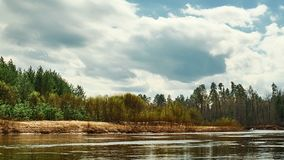美好的野生生物风景 在森林时间膝部中间的河 股票录像