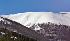 美好的阿尔卑斯冬天全景鸟瞰图 免版税库存照片