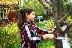 美好的青春期前的女孩limewash保存的苹果树在agains 免版税库存照片