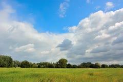 美好的领域和印象深刻的云彩在跟特布鲁日 免版税图库摄影