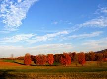 美好的颜色秋天 库存照片
