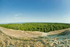 美好的风景、沙丘、木头和海 免版税库存照片