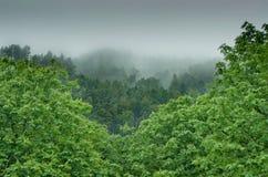 美好的风景与在谷的云彩 威尔士, Cymru 图库摄影