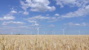 美好的风景全景与造风机的在干草原区域 股票视频