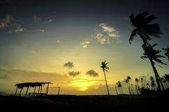 美好的风景剪影图象由椰子树和竹子和传统小屋的做的椰子树 图库摄影