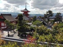 美好的风景和自然奇迹在京都,日本 库存照片