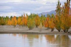 美好的风景在中国的西藏 库存图片