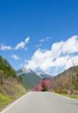 美好的风景在台湾 免版税库存图片