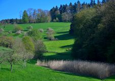 美好的风景在春天在欧登瓦德山,德国 库存照片