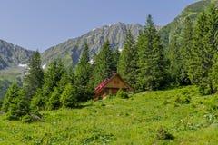 美好的风景在有传统山瑞士山中的牧人小屋的喀尔巴汗 库存照片