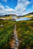 美好的风景在有带领通过与绿草的一个谷和石头的一条供徒步旅行的小道的挪威由一个蓝色湖决定在mo 免版税库存照片