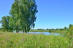 美好的风景在木头中的蓝色湖在俄罗斯西伯利亚 免版税库存照片