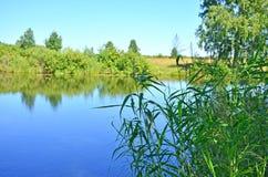 美好的风景在木头中的蓝色湖在俄罗斯西伯利亚 库存照片