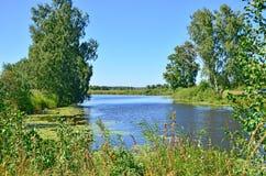 美好的风景在木头中的蓝色湖在俄罗斯西伯利亚 库存图片