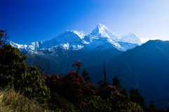 美好的风景在Himalays,安纳布尔纳峰地区,尼泊尔 库存照片