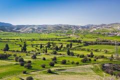 美好的风景看法与新鲜的绿色草甸和山的在背景中冠上在与蓝天的一个晴天 库存图片