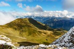 美好的风景看法在有新鲜的绿色草甸和雪的阿尔卑斯加盖了山上面 免版税库存照片