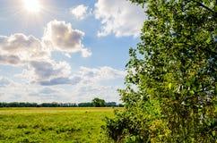 美好的风景 与云彩的蓝天和太阳和光束 绿色领域构筑与树 免版税库存照片