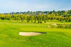 美好的高尔夫球安排 免版税库存照片
