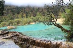 美好的黄龙自然保护在中国的四川 库存照片