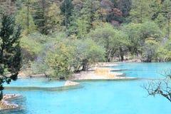 美好的黄龙自然保护在中国的四川 库存图片