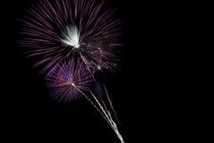 美好的黑色破裂烟花紫色天空 免版税库存照片