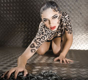 美好的年轻欧洲模型画象在猫构成和bodyart的 库存图片