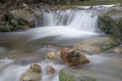 美好的水秋天在深森林里 免版税库存照片
