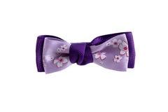 美好的紫罗兰色弓 免版税库存图片