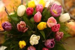 美好的紫色色的郁金香开花背景 库存图片