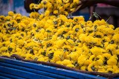 美好的黄色merigod花出售在吉登伯勒姆,印度的市场上 免版税图库摄影