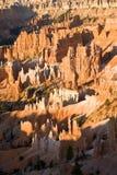 美好的bryce峡谷横向 库存照片