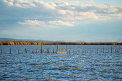 美好的L ` Albufera在日落的湖视图 库存照片
