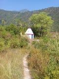 美好的mandir在密林 免版税库存图片
