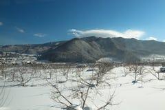 美好的moutain在冬天 库存照片