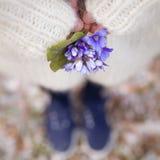 美好的snowdrops在一个少妇的手上白色羊毛衫和蓝色鞋子的 第一朵春天花在森林里 免版税库存照片