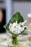 Snowdrops美丽的花束  免版税图库摄影
